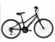 Bicicleta Caloi Forester 24