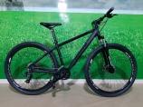Bicicleta High One Icon 29